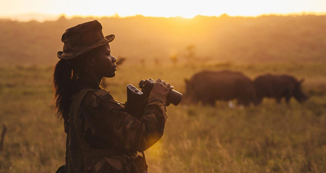 Ranger vigilando rinocerontes
