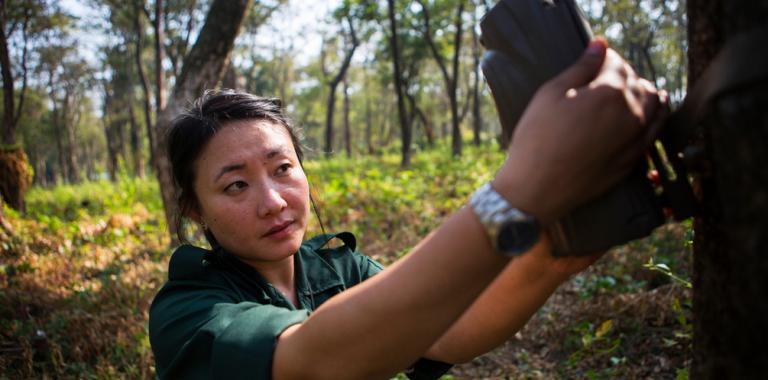 tráfico de animales Bután lucha por el tigre